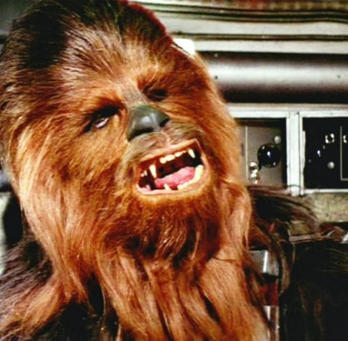 Chewbacca-starwars
