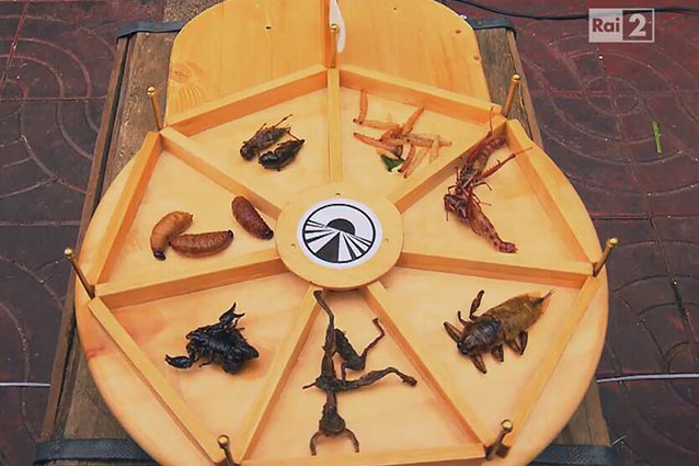 insetti-pechino-express